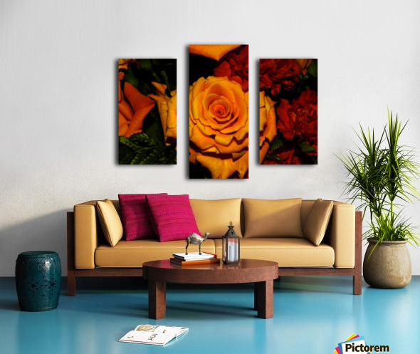 sofn-6411E9A2 Canvas print