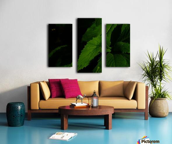 F (11) Impression sur toile