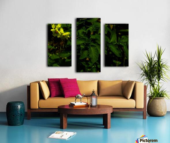 F (10) Impression sur toile