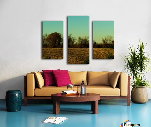 sofn-840D8D25 Canvas print