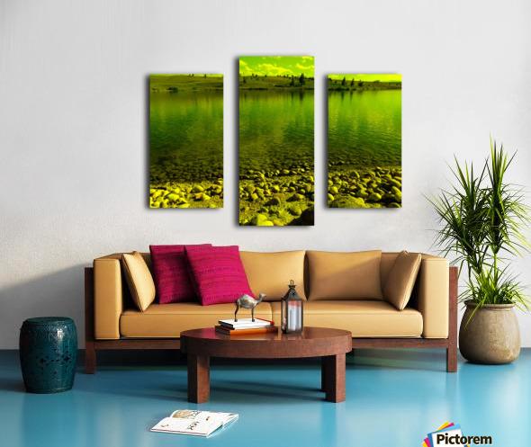 sofn-D8955C26 Canvas print