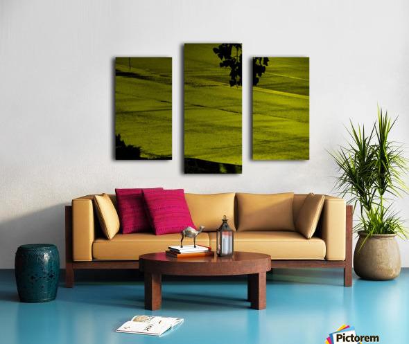 sofn-330900A2 Canvas print