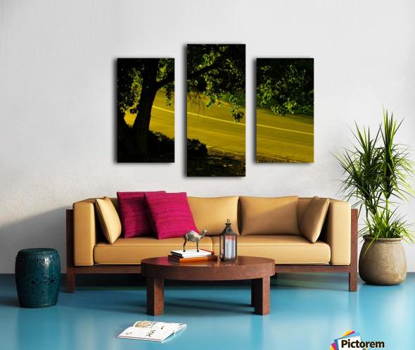 H (14) Canvas print