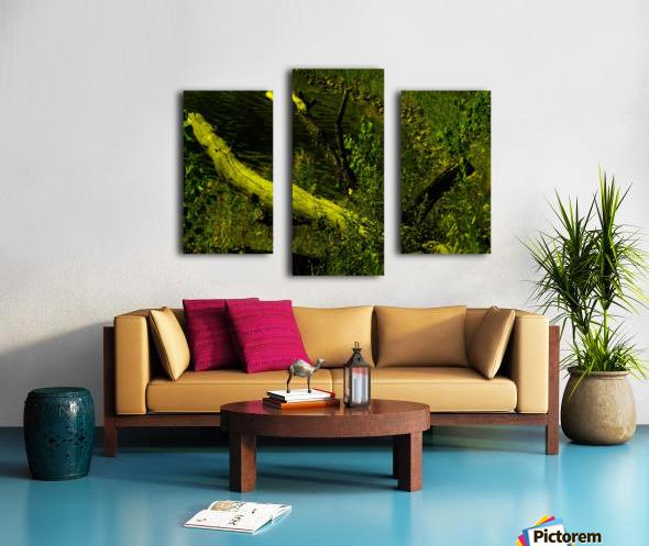 H (7) Canvas print