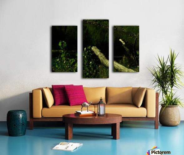 H (6) Canvas print