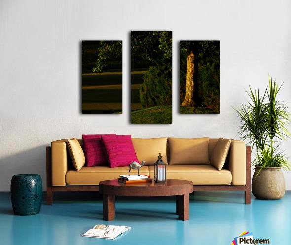 sofn-3048EECD Canvas print