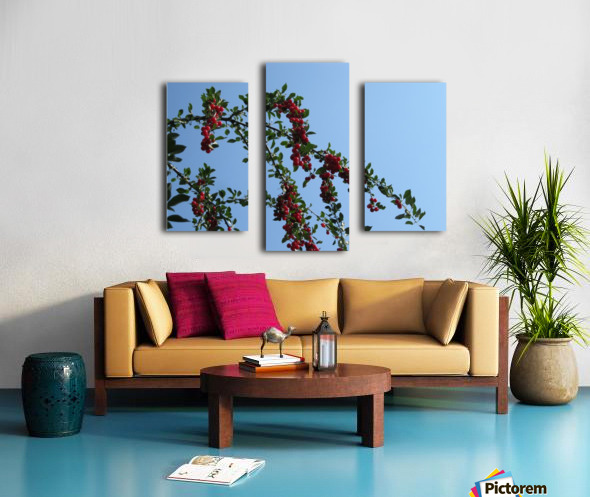Summer Bounty Canvas print