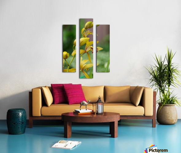 Yellow flowers stem Canvas print