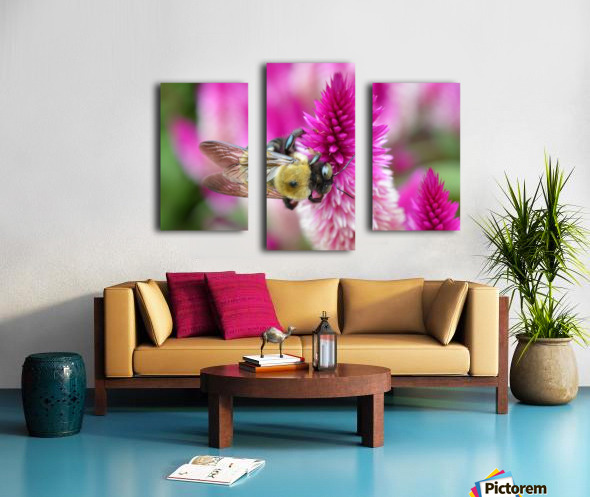 Bee On Pink Flower Photograph Canvas print