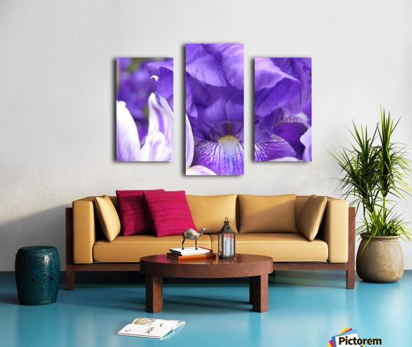 Blue Iris Photograph Canvas print