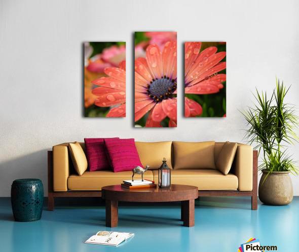 Orange Flower Covered In Rain Drops Photograph Canvas print