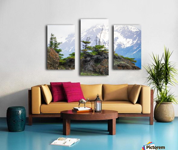 Alaska Scenery Pictures - Cliffs and Mountains Impression sur toile