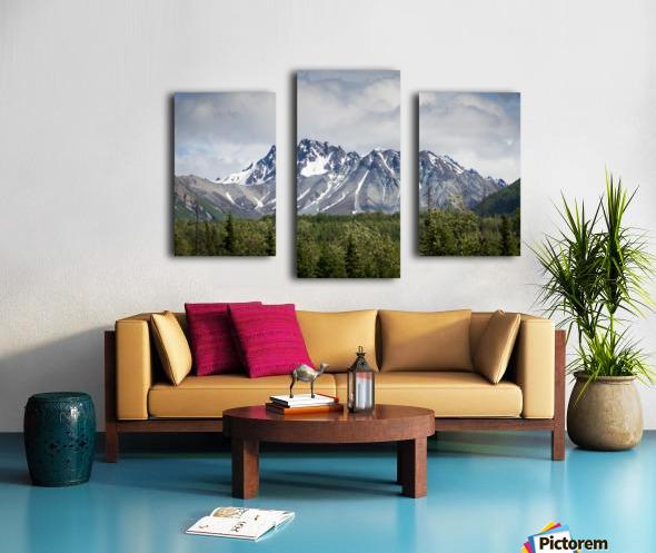 Alaska Mountain Range Canvas print