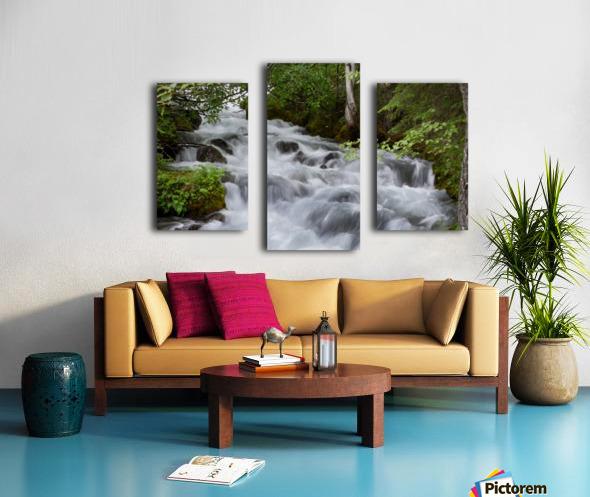 Beautiful Waterfall Photograph Canvas print