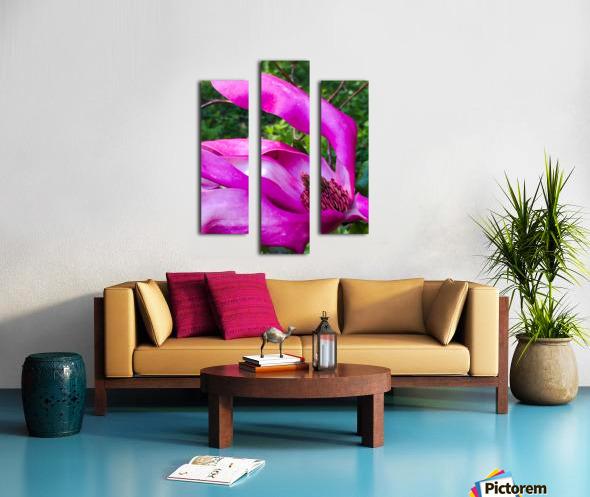 Peaceful pink  Impression sur toile