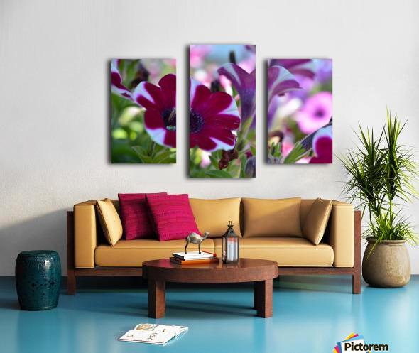 Pink Flowers Photograph Canvas print