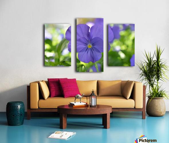 Blue Pansy Photograph Impression sur toile