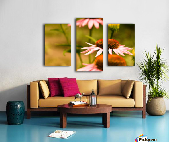 Like Sunflowers Canvas print