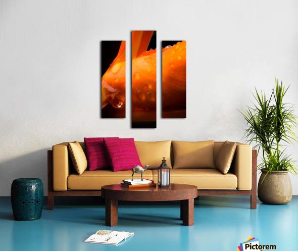 Sweet Orange sweat Impression sur toile