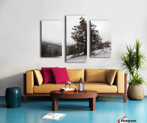 Snowy Mountain Juniper Canvas print