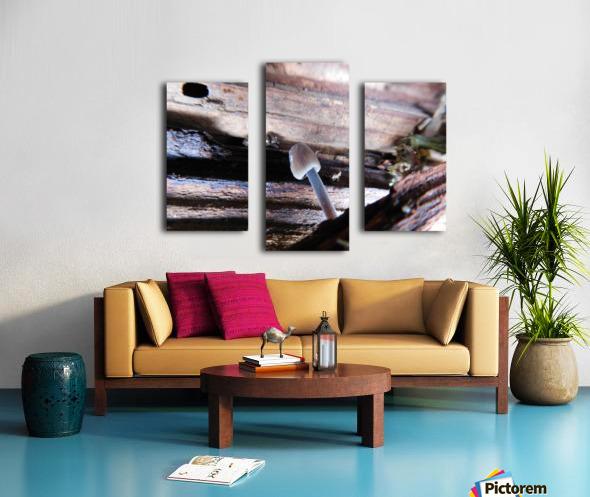 Brave Little Mushroom Canvas print