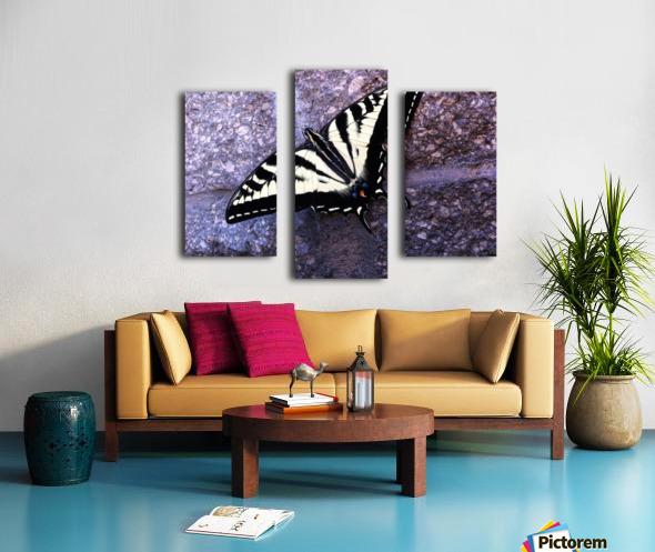 Swallowtail on Stone Wall Canvas print