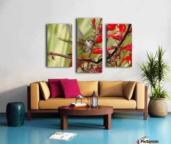 Ruby And Scarlet Canvas print