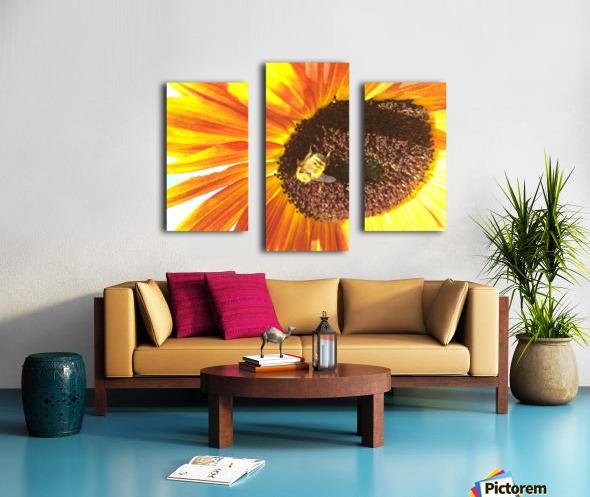 Bumblebee on Sunflower Canvas print