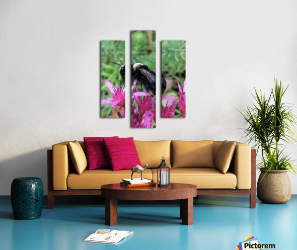 Black Bumble Bee Canvas print