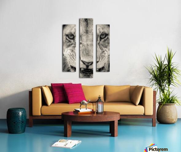 Grrrr Canvas print