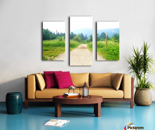 dream road Canvas print