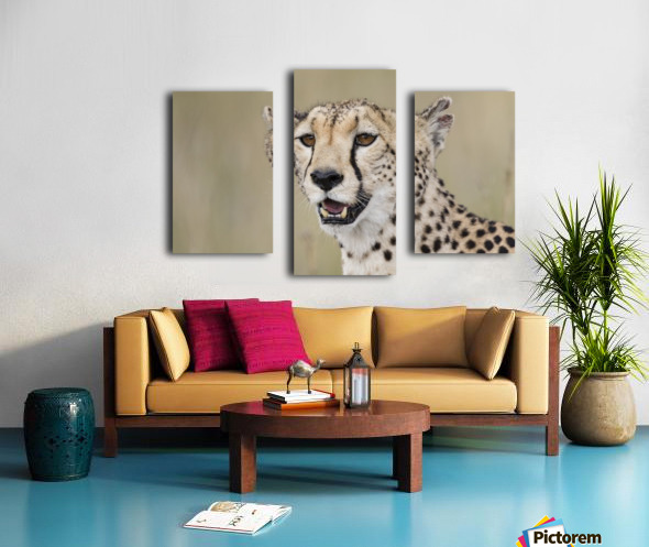 Cheetah Portrait by www.jadupontphoto.com Canvas print