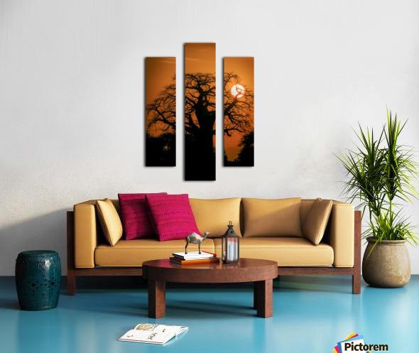 Baobab Sunset Canvas print