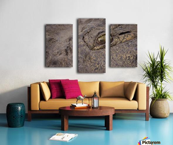 164A1267 Canvas print