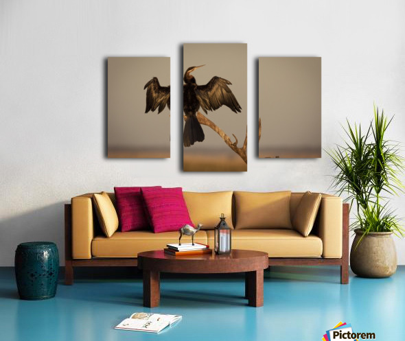 All Wings Open Canvas print