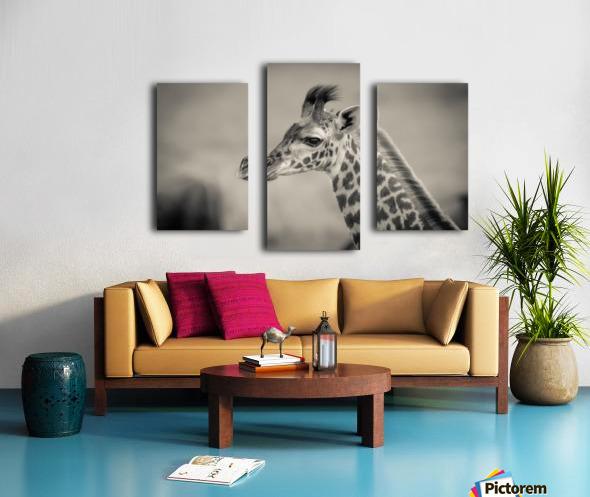 Girafe Calve Canvas print