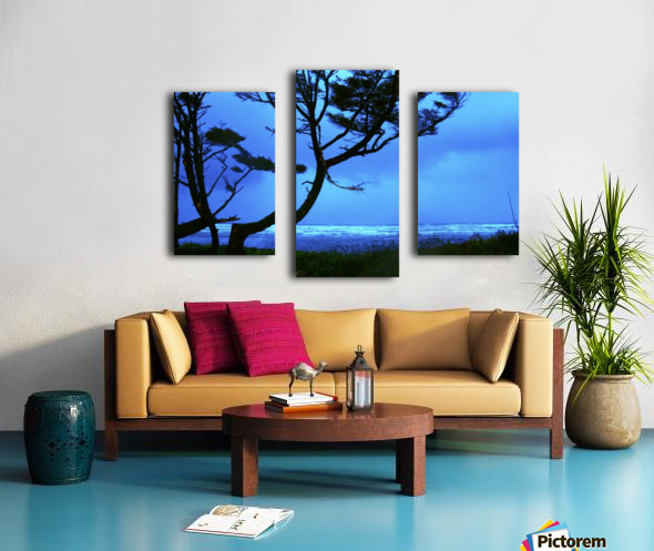 Long Exposure Night Coast Canvas print