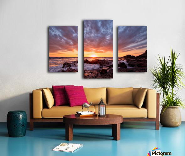 Awash Canvas print