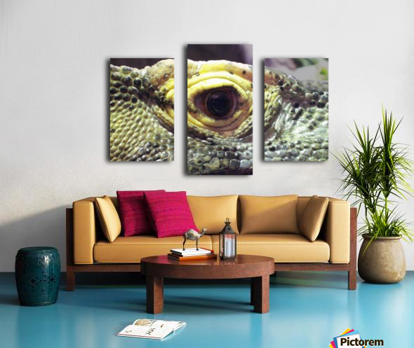 Scale Canvas print