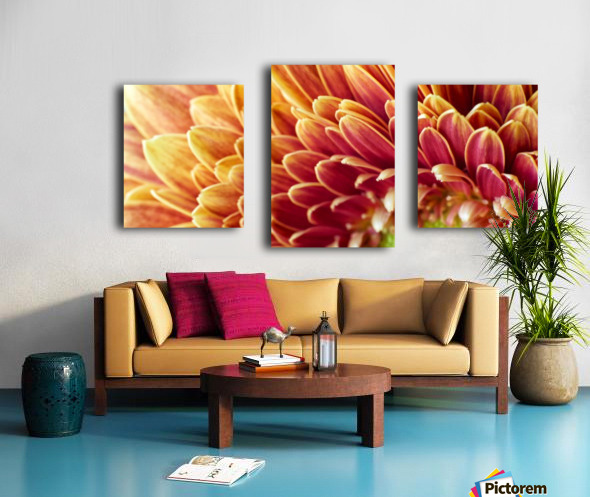 Golden Chrysanthemum Canvas print