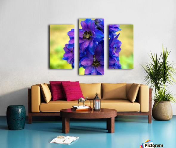 Purple And Blue Canvas print