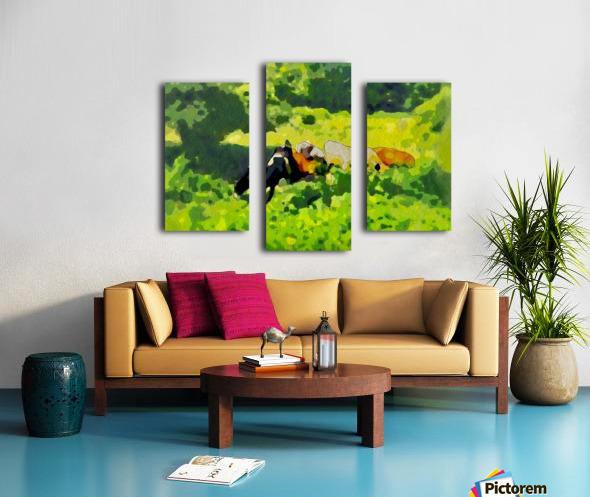 Cummington Cows Canvas print