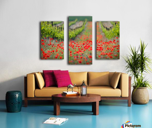 Red district Canvas print