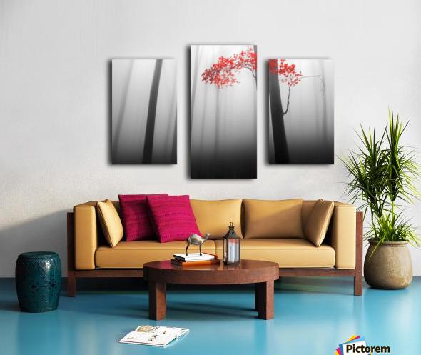 illusion Canvas print