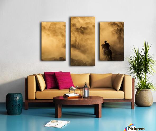 Cappadocia wild horses Canvas print