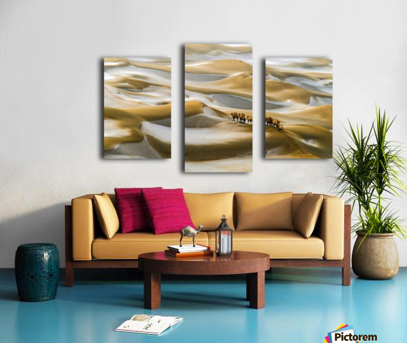 Desert Winter Canvas print