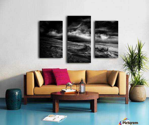 marram grass Canvas print