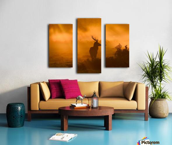 Guard Of Light Canvas print