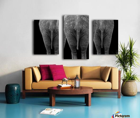 The Elephants Canvas print