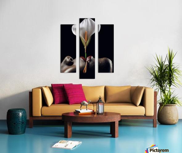 Flowers Garden I Canvas print